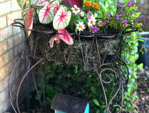 Flowers, planter, birdhouse